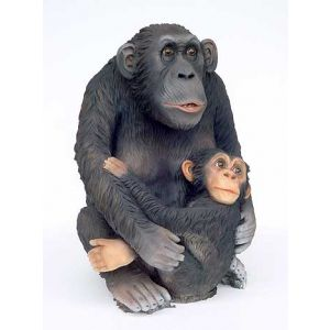 chimpansee met jong polyester