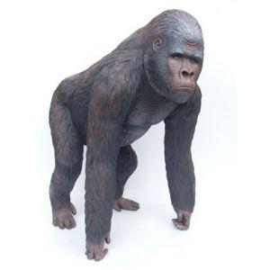 silverback gorilla bokito aap
